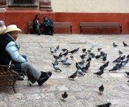 【墨西哥2】SanMigueldeAllende