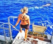 在全球十大圣地浮潜,赏美丽的珊瑚和鱼,还能摸着大海龟的背游泳