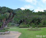 日本宫古岛植物园