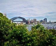 悉尼神秘园,老妇往后余生打造了一座花园为哪般