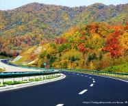 这就是黑龙江的秋天!你动心了吗?