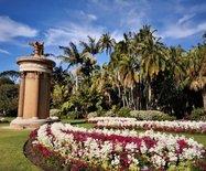看悉尼:没有围墙不收门票,建在市中心的皇家植物园