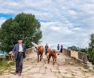 沙溪,茶马古道上惟一幸存的千年古集市