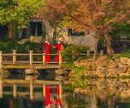 惠山古镇寄畅园,这里的秋天美成一幅画