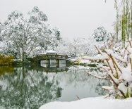 """""""段子手""""朱广权的""""超凶""""降温,西湖下雪了"""