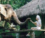 【泰国】让邓丽君痴迷一生的魅力泰北古城,那些行走清迈的美好记忆