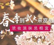 春季到武大来赏樱 浓妆淡抹总相宜