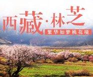 西藏林芝 繁華如夢桃花境