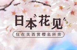 日本花见 住在关西赏樱名所旁