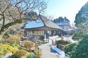 【日本旅游】这个樱花季逃离都市,来一次说走就走的日本行吧!