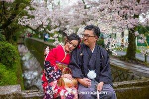 2018最新日本樱花线路图,不容错过的京都14大热门赏樱地