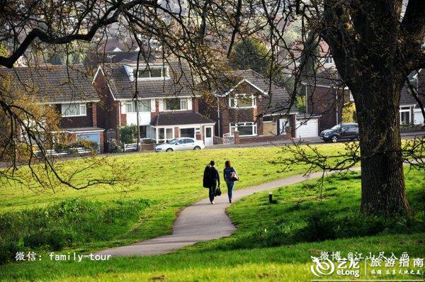 大爪草简笔画-这片绿地,俨然是小镇的世外桃源.   张牙舞爪的老树枝条下走过的女