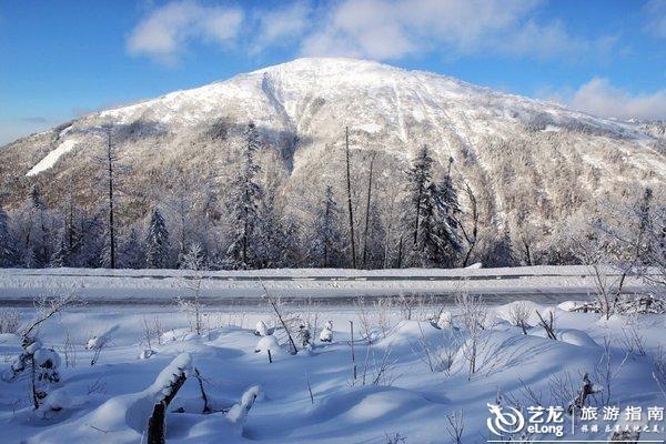 黑龙江最高峰,海拔1690米的大秃顶子山