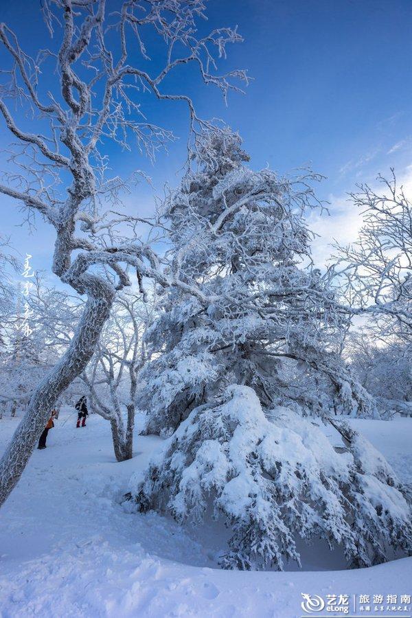 在雪乡的日子--那些让人惊艳的日出和日落
