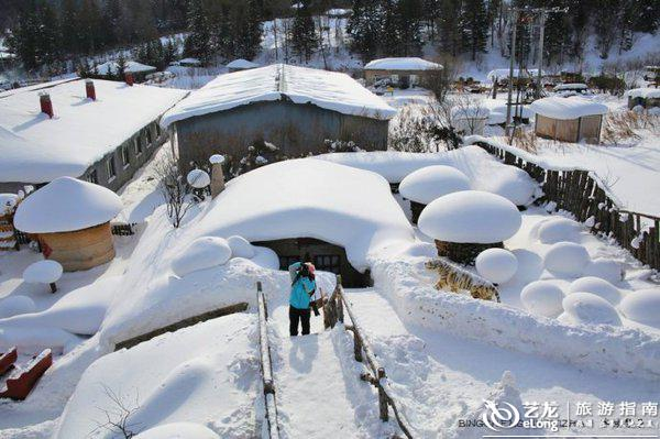 林子草堂,雪乡最特色最温馨的民宿