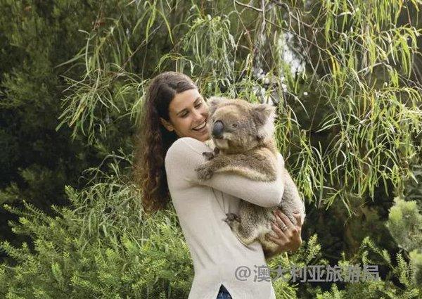 喜欢小动物的朋友可以自驾到克莱兰德野生动物园(cleland wildlife