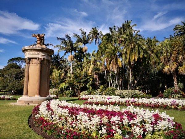 饭店植物园旅游,攻略植物园旅游攻略,12月北京皇家黄海皇家图片