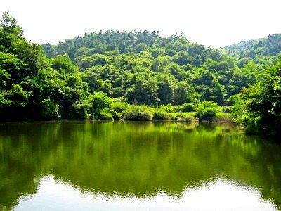 武汉 木兰天池