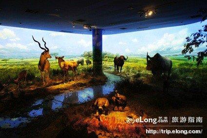 大连自然博物馆