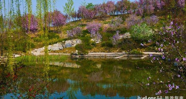 石家庄植物园