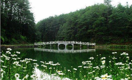 天池山国家森林公园旅游