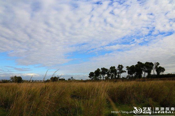 金河湾秋日的午后 冰城馨子 金河湾湿地公园图片