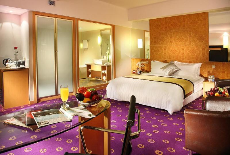 Ramada Plaza Hotel (Pudong South Branch) Room Type