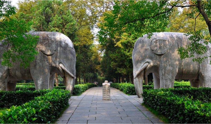 南京国际会议大酒店图片