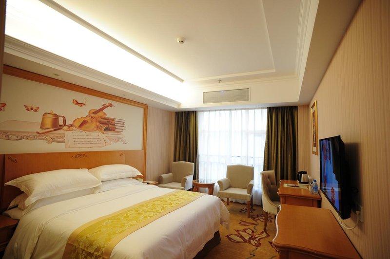 VIENNA HOTE HUIZHOU DANSHUI BAIYUN ROAD Room Type