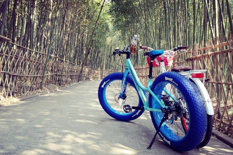 上海东方绿舟宾馆 - 其他