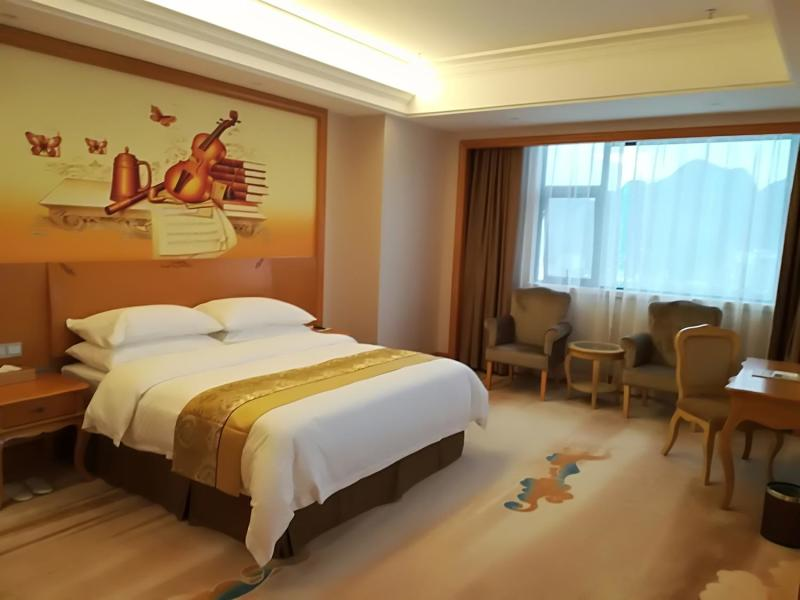Vienna International Hotel (Daxin Detian Square) Room Type