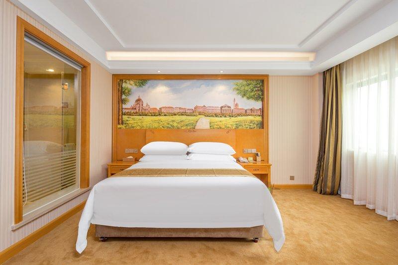 Vienna hotel zengcheng wanda plaza store Room Type