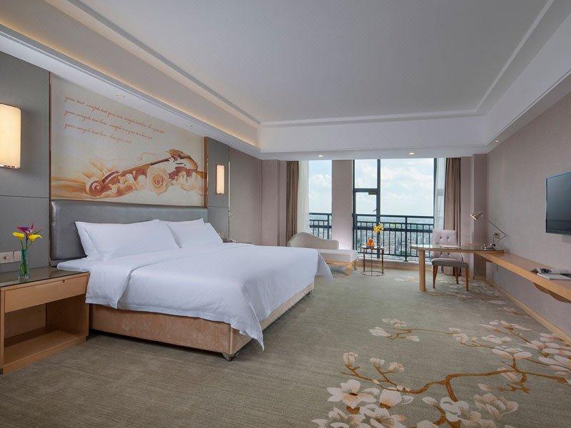 维也纳酒店(开平水口店)房型