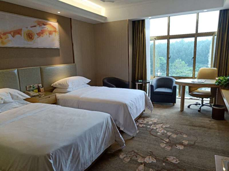 Vienna Hotel (Shou County Jingrun Central City) Room Type