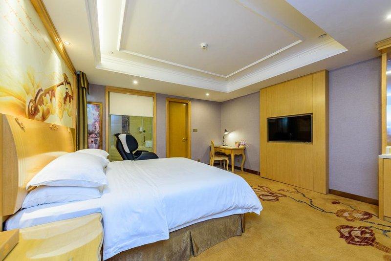 维也纳酒店(南宁南湖公园店)房型
