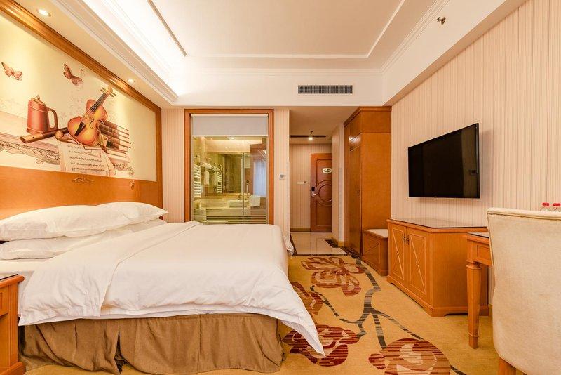 维也纳酒店(济南百脉泉店)房型