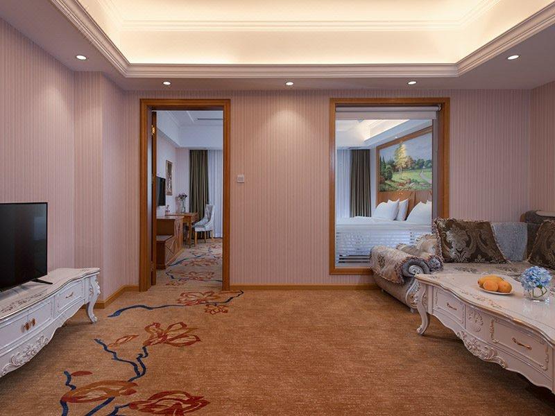 Vienna Hotel (Beijing Jiugong Metro Station) Room Type