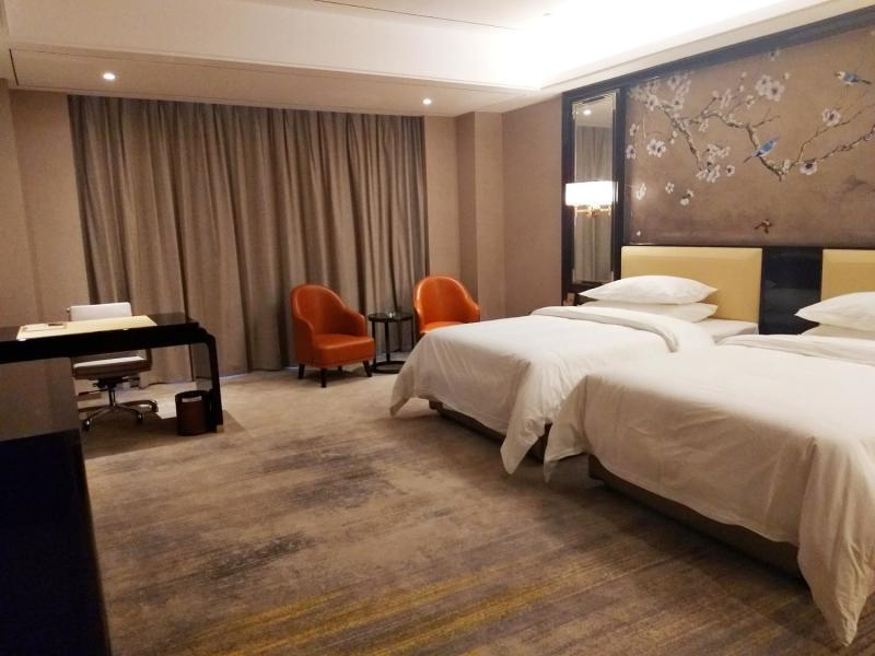 Vienna International Hotel (Chaling) Room Type