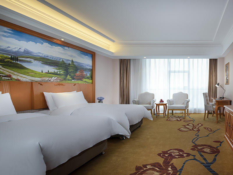 Vienna International Hotel (Gaomi Huayuan Street) Room Type