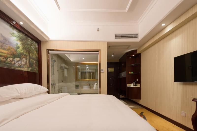 Vienna Hotel Shenzhen Pinglong Road Branch Room Type
