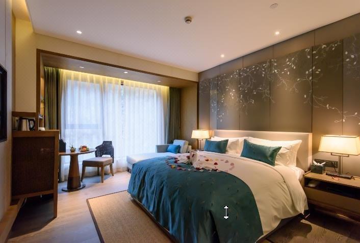 建德·杭州新安雷迪森酒店房型